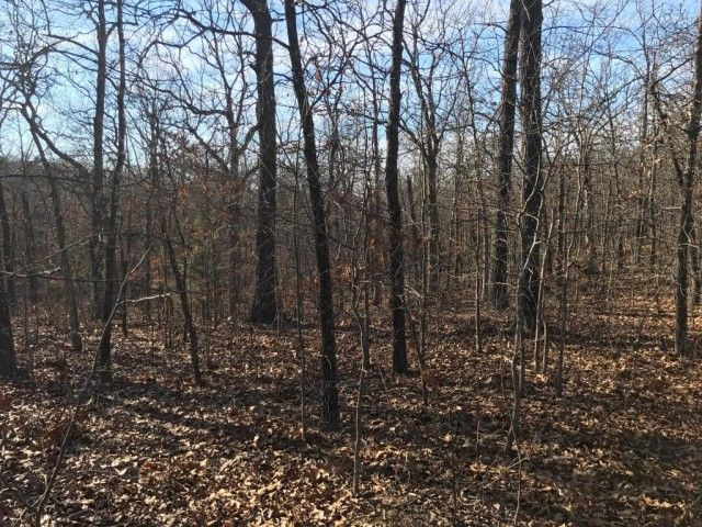 Beautiful & secluded! Nice piece of wooded Southern Missouri hunting land or a quiet & secluded home site. There is an easement that runs close to the east end of the property that would make a great start to a driveway. Call today to set up an appontment! in Cabool MO