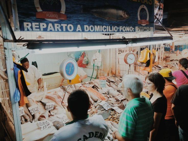 Day 20   Buying seafood in the Central Market. - Día 20   Comprando mariscos en el Mercado Central.