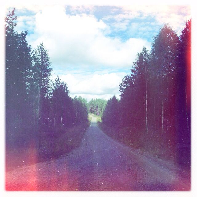 Forest road. I love roads and paths. Tie metsässä.