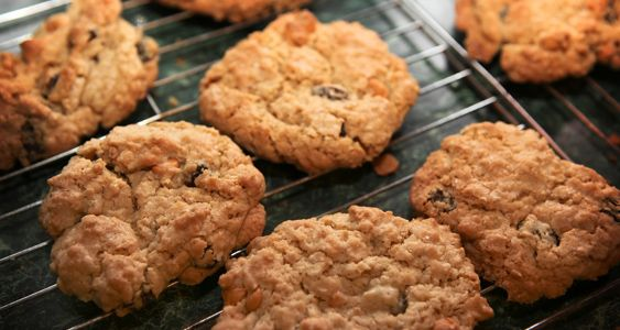 PROTEIN COOKIES INGREDIENTS    - 2 cups Muscle Milk Chocolate Protein Powder (32g protein)  - 2½ tbsp of natural peanut butter  - ½ banana  - 1 tsp of vanilla extract  - ½ tsp of baking powder  - 2½ cups almond flower  - 1 cup raisins  - 2 tbsp cocoa  - 4 egg whites       DIRECTIONS Preheat oven to 350 degrees. Mix all ingredients. Place spoonful of mix on cookie sheet in rows. Bake for 7-10 minutes.