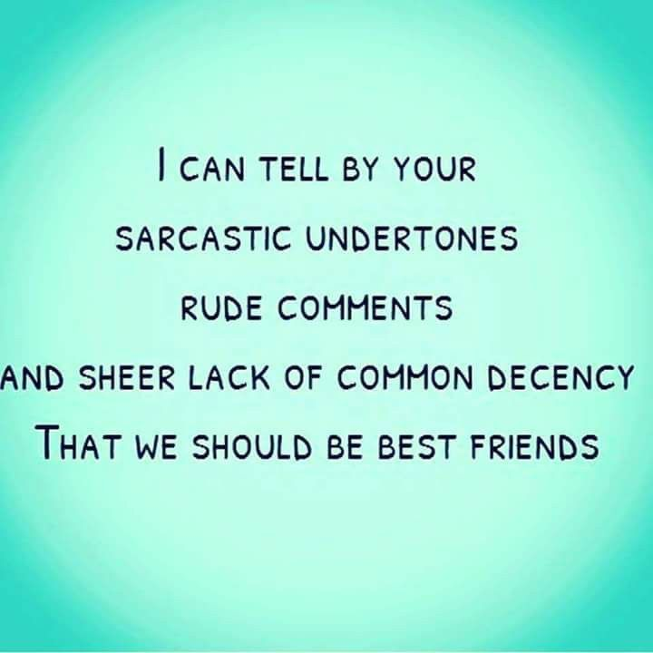 funny friendship sayings 25 best ideas about friendship sayings on 15893 | 3414c92444d3d5ed8de273cd5746f894