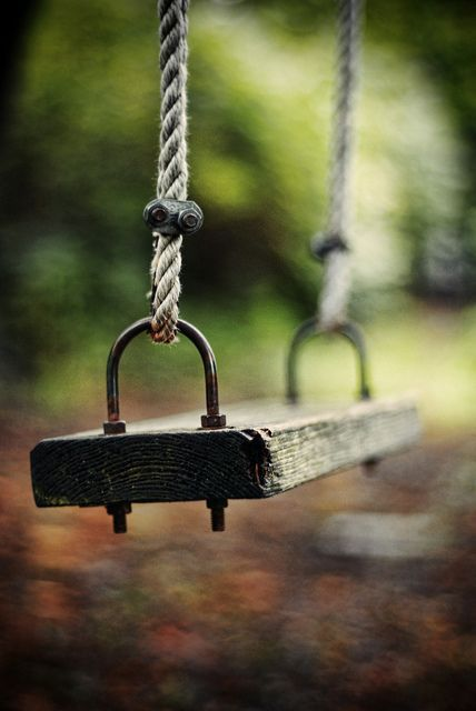 Do It Yourself Projects To Create Tree Swings
