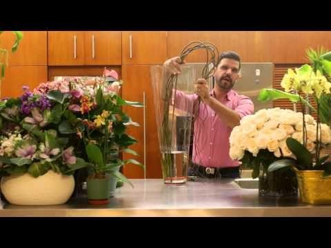 La Casa con Flores. Episodio 3. Arreglo para la sala - YouTube
