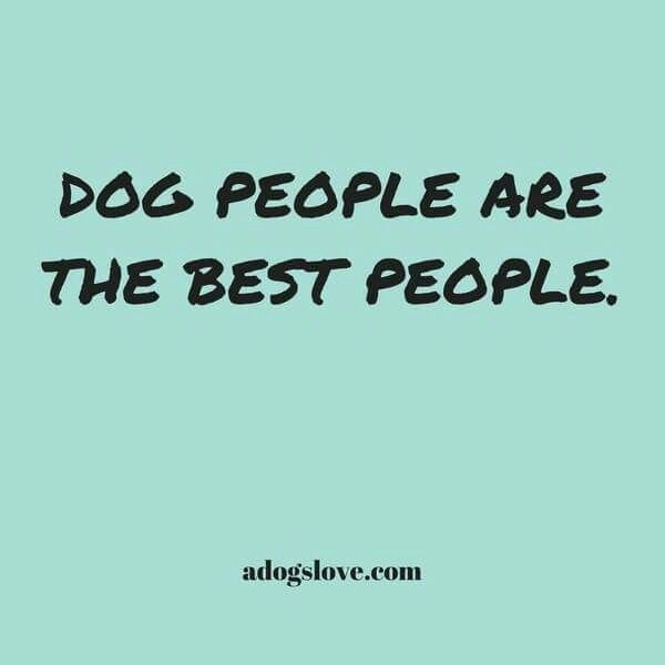 254 best Crazy Dog Lady images on Pinterest Doggies, Pets and - proudest accomplishment
