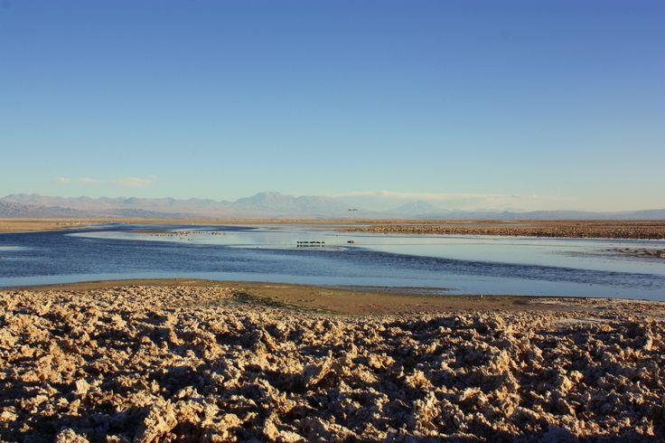 1,000km of desert #Chile #Travel