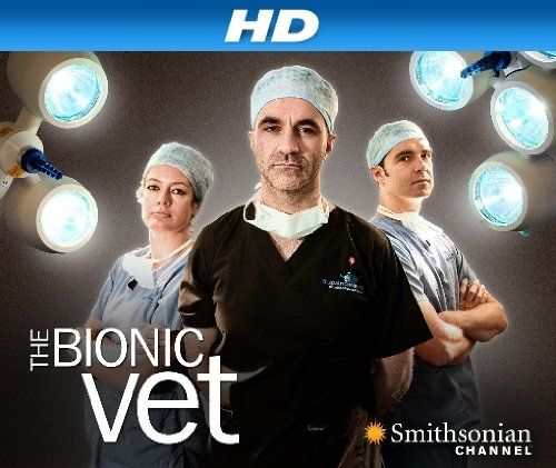 """THE BIONIC VET 