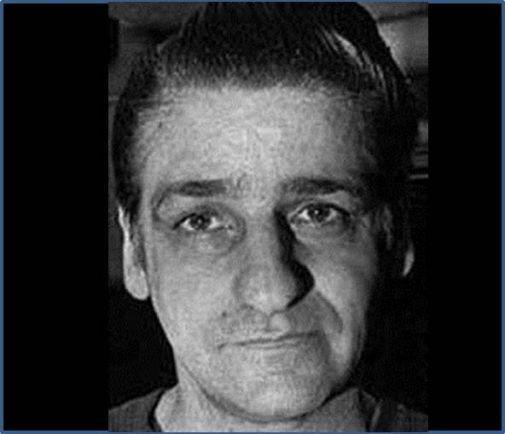 the relation of albert desalvo in the boston stranger killings Albert henry de salvo september 3, 1930 – november 26, 1973 albert desalvo was considered the boston strangler, responsible for killing 13 women, but he was never.