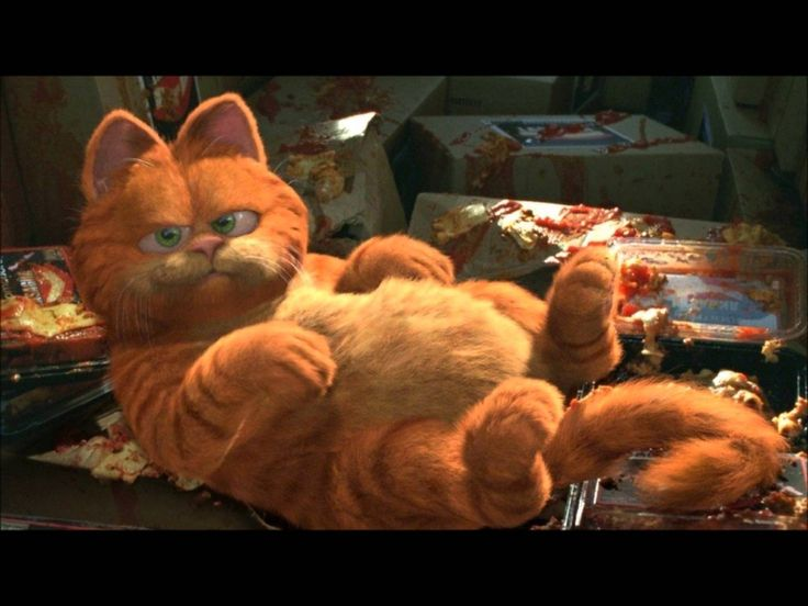 "Baha Men - ""Holla"" Garfield: The Movie Music (Slideshow) HD - YouTube"