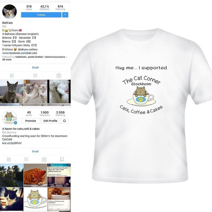 Thanks @bali.cats. You are our 1000th follower. As a small appreciationonce our crowdfunding is completed we will send you this t-shirt. (More info in the profile link) Thanks again