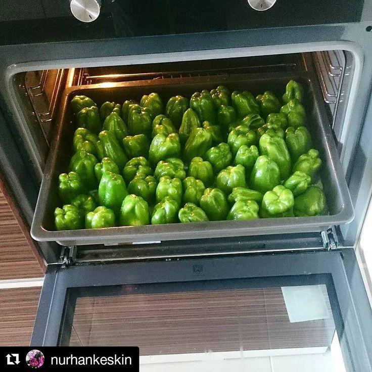 """1,281 Beğenme, 75 Yorum - Instagram'da Eylul Nihal Danişmaz (@cetvelciler): """"#Repost @nurhankeskin with @repostapp ・・・ Dolmalık biberleri üzerine fırça ile zeytinyağı sürüyorum…"""""""
