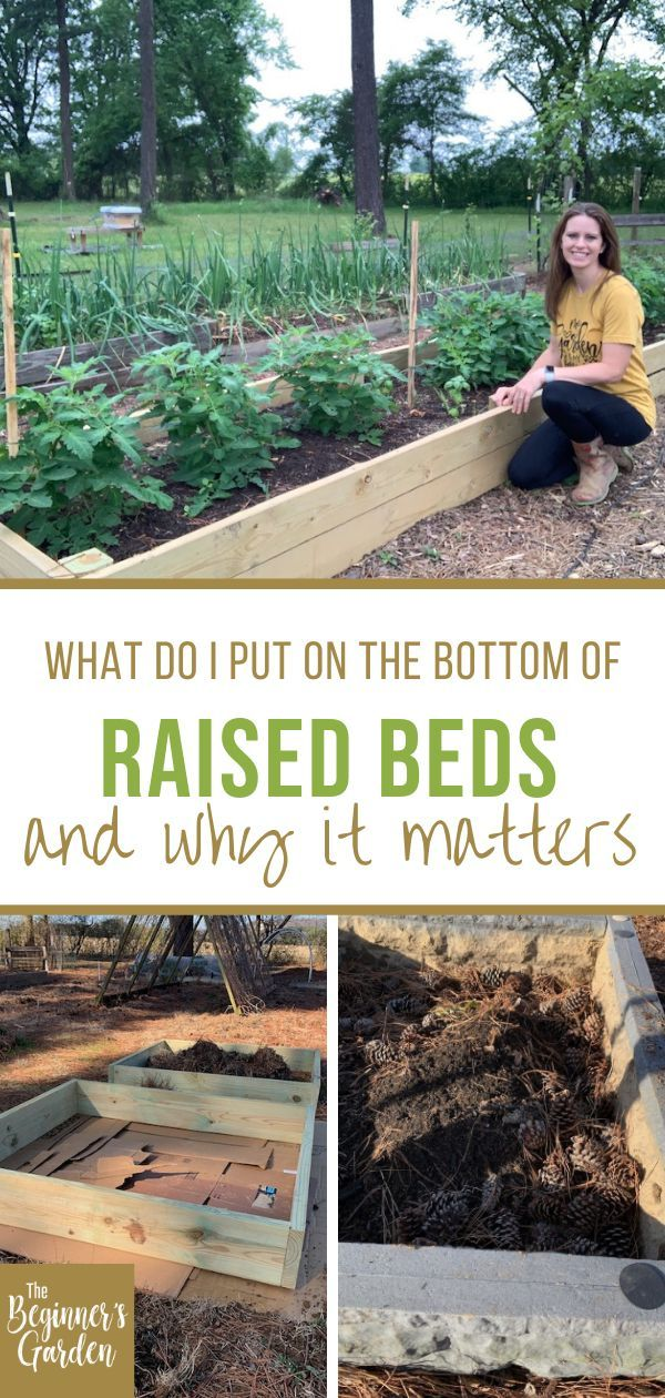 Pin On Raised Bed Gardening