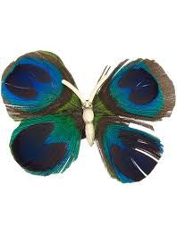 Image result for feather beautifly
