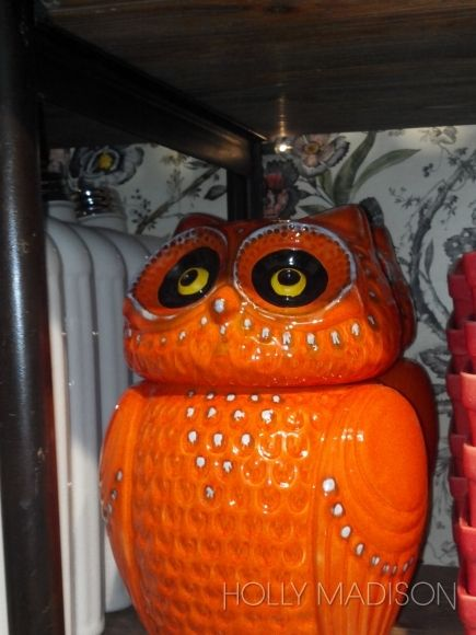 owl home decor 54 best images about things i want for my kitchen on 30183