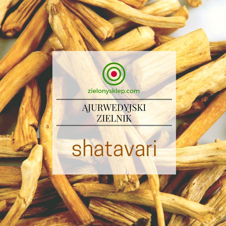 Shatavari - roślina dla kobiet! Przeczytaj więcej na blog.zielonysklep.com!