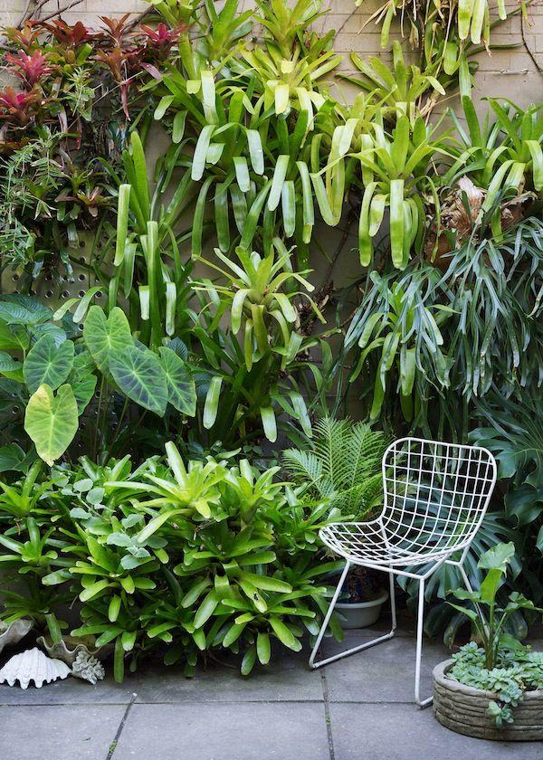 1000 ideas about tropical garden design on pinterest tropical gardens landscape services and garden design big garden office ian