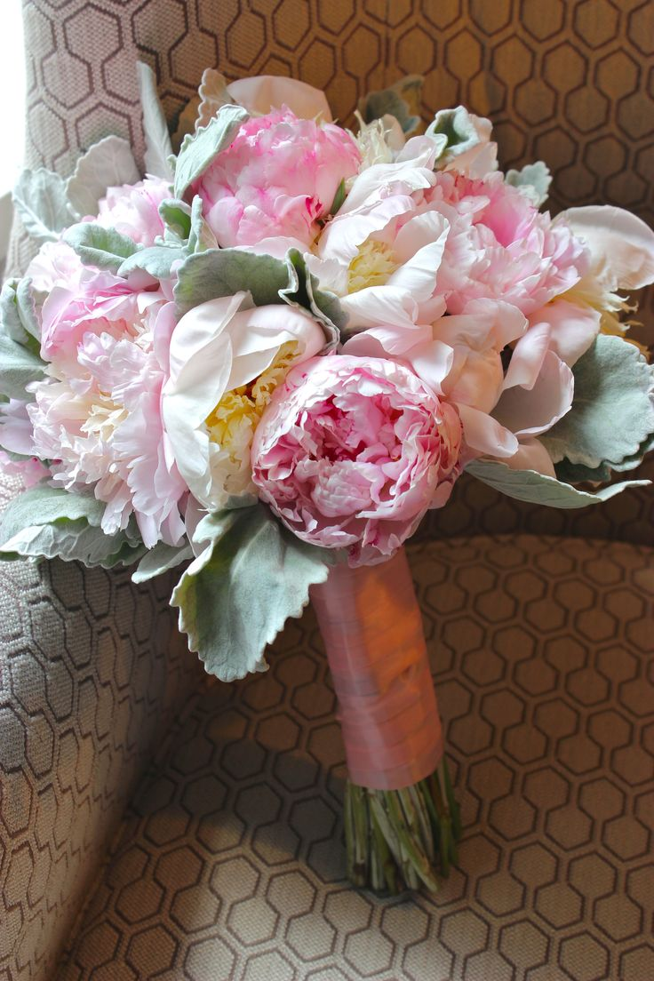 Bridal bouquet of peonies and dusty miller