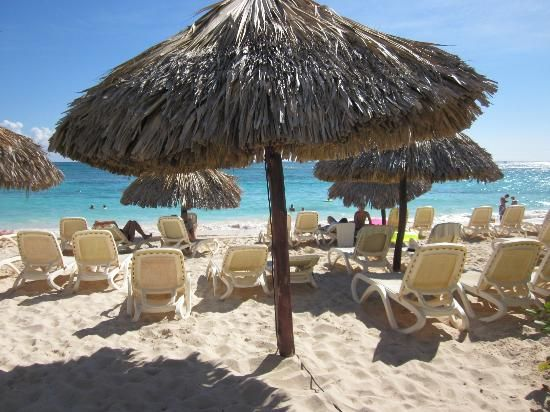 162 Best Punta Cana Majestic Images On Pinterest