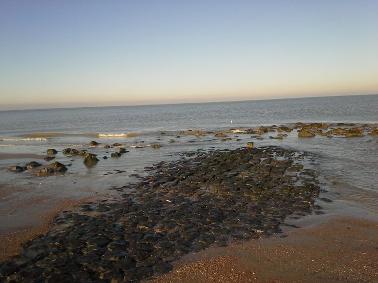 Op het strand is veel te zien en te beleven.