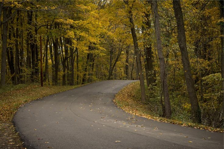 🌞 winding road pavement  - get this free picture at Avopix.com    ▶ https://avopix.com/photo/20158-winding-road-pavement    #winding #avenue #road #asphalt #pavement #avopix #free #photos #public #domain