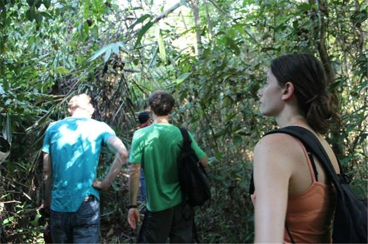 Trekking Cat Tien national park 2 days