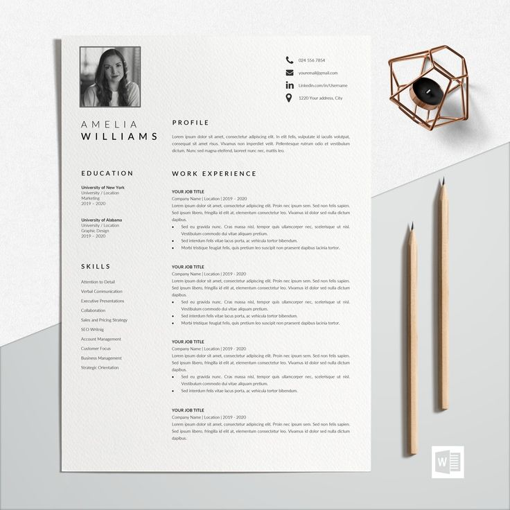 Buy Simple Resume Format Professional Resume Format at