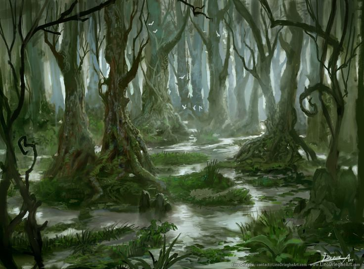 fantasy swamp   starting with a new project to create a better portfolio to send ...