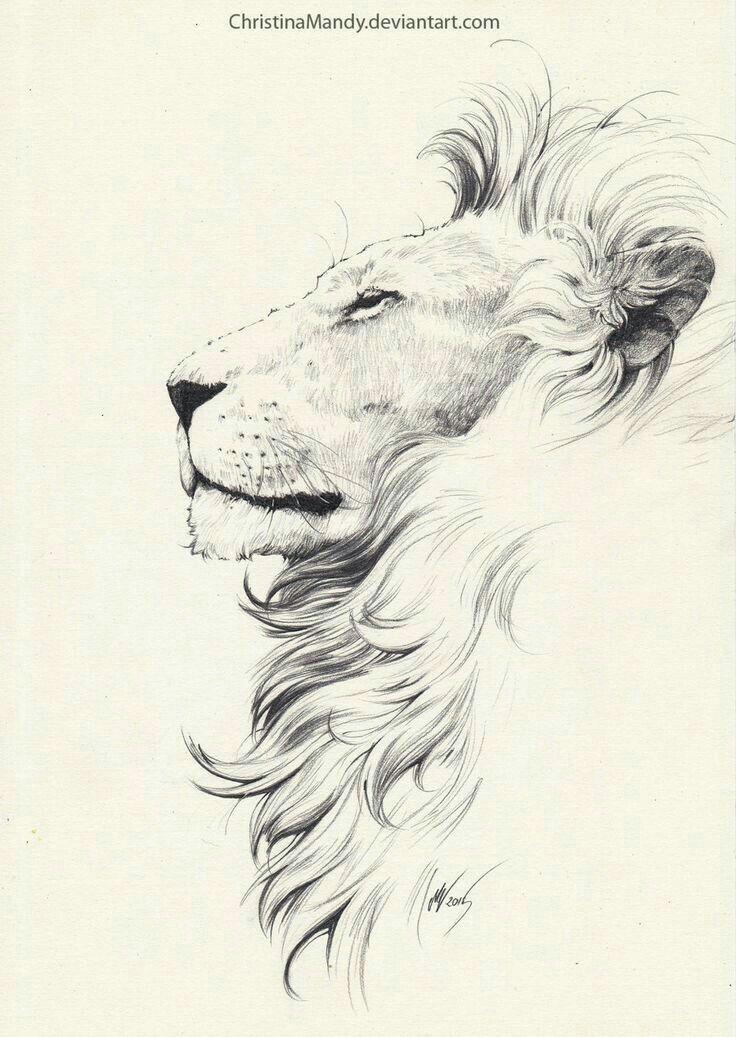 Roaring Lion Profile Tattoo Possibly a Leo ...