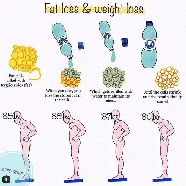 fat loss & weight loss by @pheasyque this post by eugen is a great  weight loss diagram #13