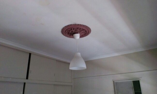 LOVE the ceiling roses, dont love the light fittings :-/