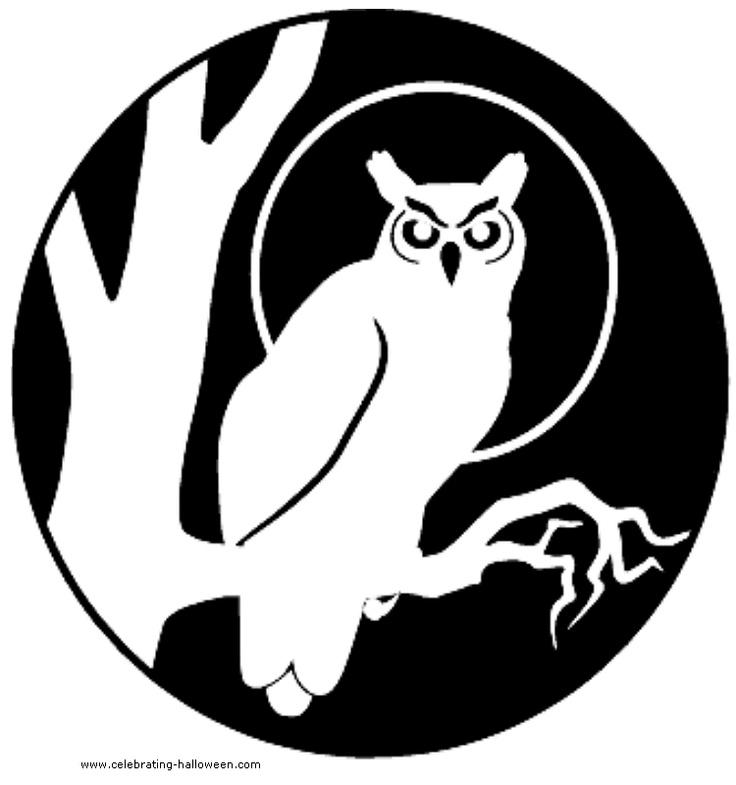 Google image result for for Spooky owl pumpkin stencil