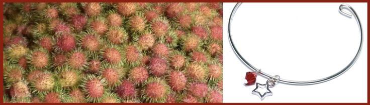 """RAMBUTAN..... Ein echter Hingucker ist Rambutan, die haarige Litschi. Die ursprüngliche Heimat der Frucht ist Malaysien, Indien und Süd-Vietnam, auf mailaiisch heißt Haar """"rambut"""". Die leuchtend roten welligen weichen Haare sind das Merkmal, sie erinnern an einen Stern oder an die Sonne. Die Kombination eines Sterns und der leuchtend roten Bicone-Perle findet sich auch als Anhänger bei diesem versilberten Armreif, ein Hingucker wie Rambutan.........."""