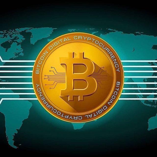 bitcoin contact