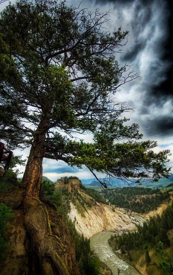 Yellowstone; photo by Trey Ratcliff