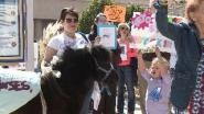 OKLAHOMA CITY – Wild horse activists held a rally in downtown Oklahoma City Monday in an effort to save Oklahoma's...