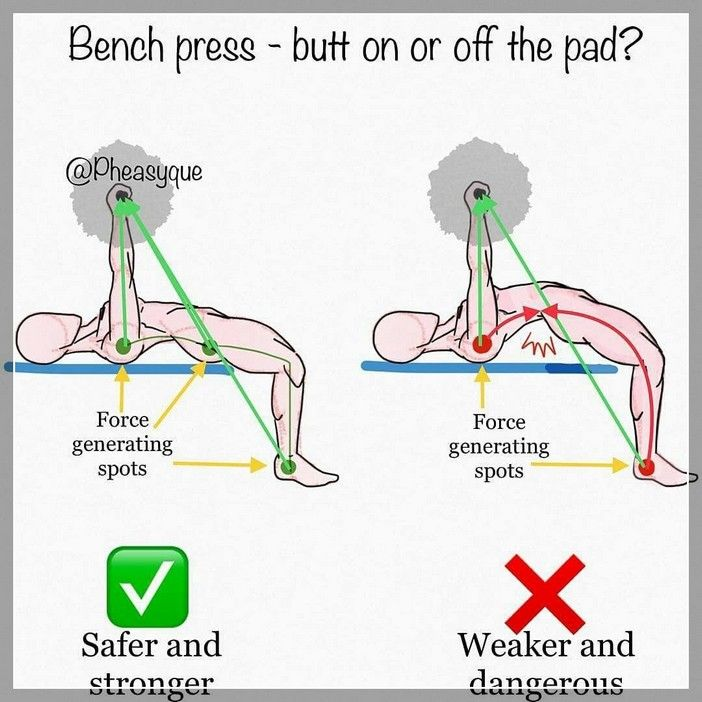 49 Reference Of Bench Press Proper Form Reddit In 2020 Bench Press Chest Workouts Weight Training Programs