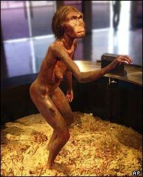 Lucy - One of Our Oldest Human Ancestors. Who were our human ancestors? Meet one of the oldest: Lucy. Lucy was a member of a species of hominids that made up some of our oldest human ancestors. Lucy's skeleton is the most complete ancestral skeletal ever to be found and the only one to be named after a Beatles song. Read on here: http://bellaonline.com/a/18240