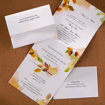 34 best images about seal & send wedding invitations on pinterest, Wedding invitations