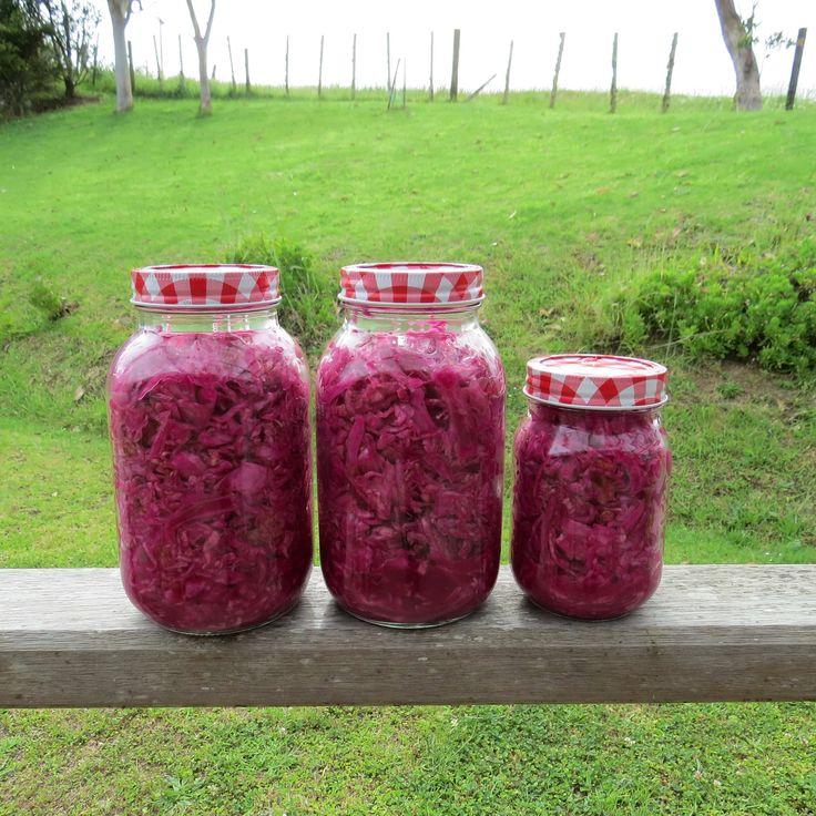 DIY Sauerkraut