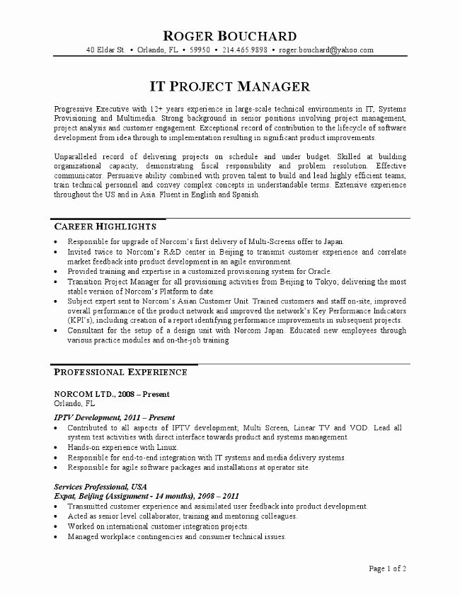 Project Management Job Description Resume Inspirational It Project Manager Resume