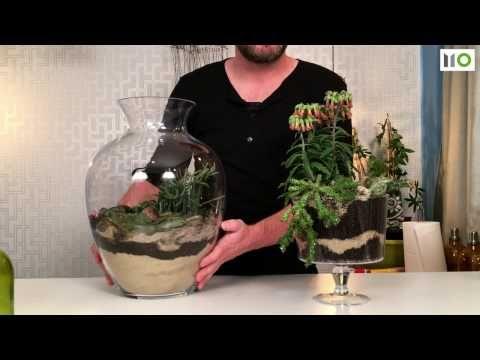 Sposób na... sukulenty w szkle / DIY Succulents Terrarium S01 E05 - YouTube