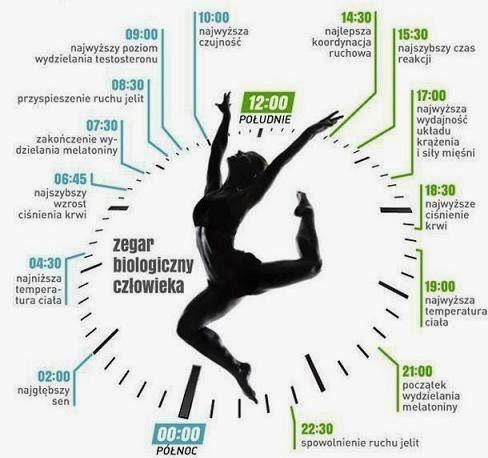 Soul & Body: Dobowy zegar biologiczny. Co się dzieje w naszym organizmie w każdej godzinie dnia...