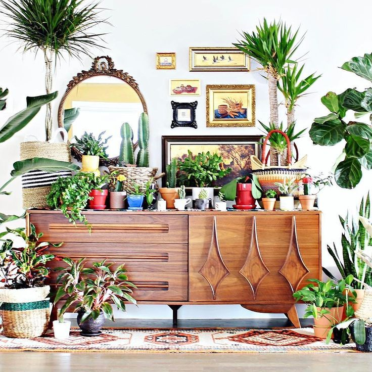 Decorating Dilemma House Plants: Best 25+ Bohemian Decor Ideas On Pinterest