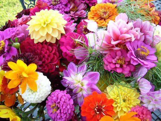 Tappeto motivo floreale Tapetes, Emborrachado