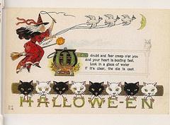 Halloween Postcard: Photos, Vintage Postcards, Vintage Halloween, Halloween Poems, Photo Shared, Cat Witch, Halloween Postcards, 11200 Cat, Vintage Witch