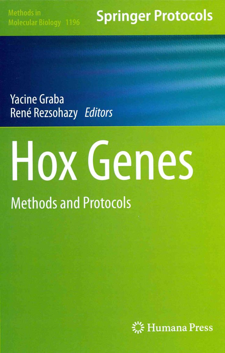 Hox Genes: Methods and Protocols