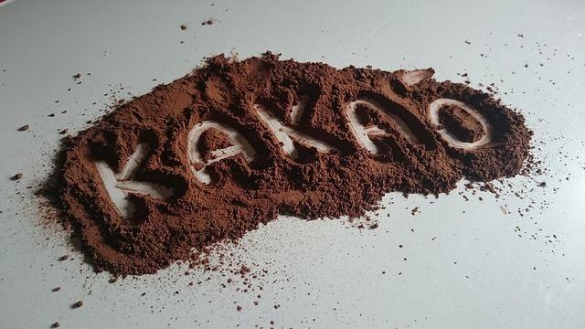 Kakaový vegan, paleo puding