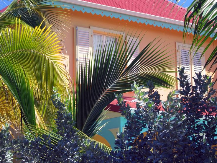 17 best images about exterior paint tropical on pinterest for Tropical exterior house colors