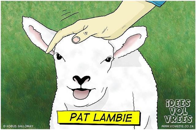 Pat Lambie