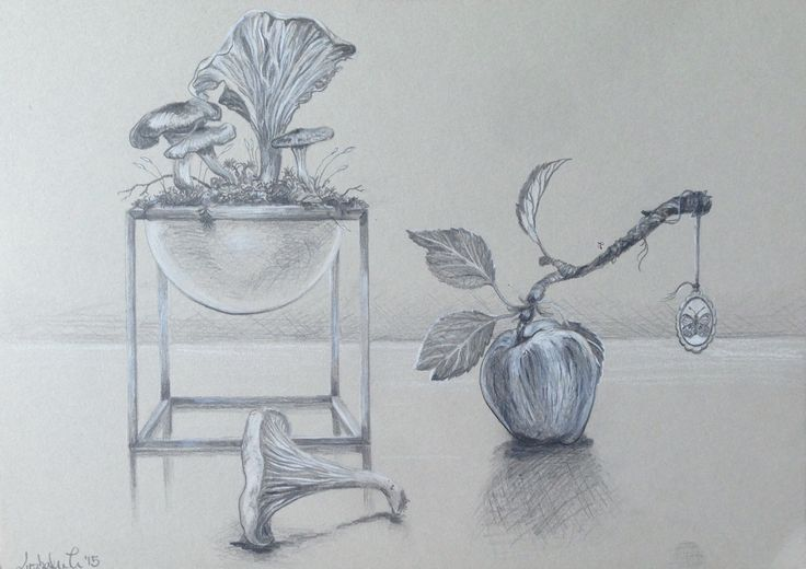 """""""Stillife med funghi, aple, jewelry with butterfly and by Lassen bowl"""", pencil and colorpencil on grey paper, A4, 2015. *SOLD* #popsurrealism"""