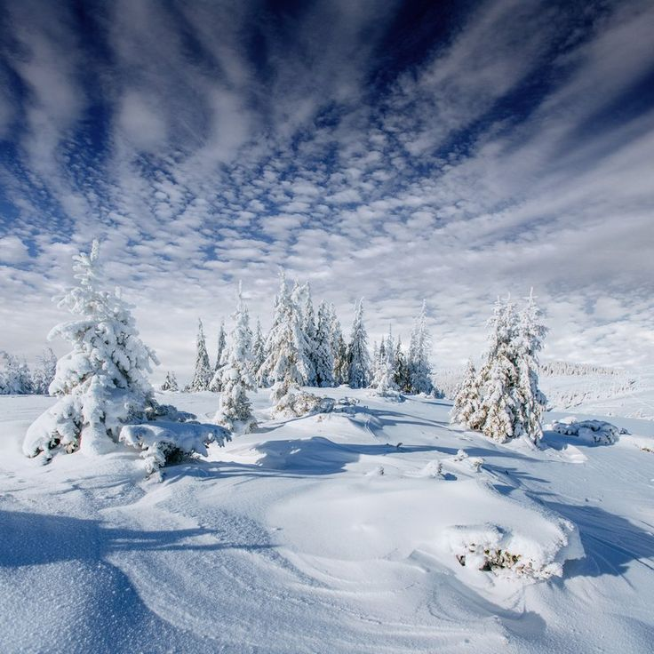Winter landscape. Discover the most beautiful winter photographies with Colourbox!
